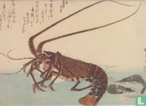 Crayfish and Two Shrimps, 1840