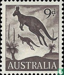 Östliches Graues Riesenkänguru