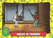 Ninjas in Training