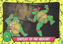 Turtles to the Rescue!
