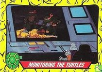 Monitoring the Turtles