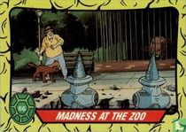 Madness at the Zoo!