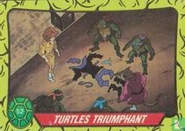 Turtles Triumphant