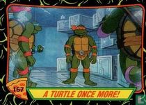 A Turtle Once More!