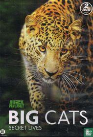 Big Cats - Secret Lives