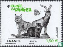 Bedreigde dieren in het wild - Europa kopen