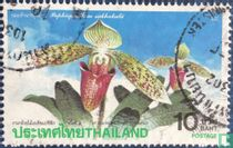 4. Asien-Pazifik-Orchideenkonferenz