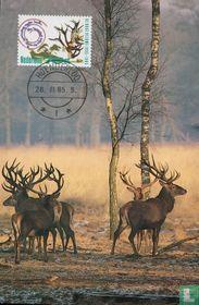 50 jarig bestaan van het Nationale Park de Hoge Veluwe