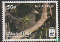 Niuafo'ou 2016 kopen