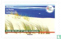 Duin van Pilat en Banc d'Arguin kopen