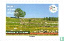 Aubrac-landschap kopen