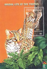 Fauna Hong Kong 2001 kopen