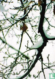 Holly Maslen 'Winter'