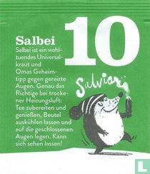 10 Salbei