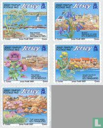 2003 Flora (JER 230)