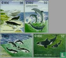 1997 Zeezoogdieren (IER 356)