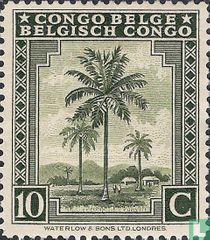 Palmen en diverse onderwerpen - voorrang Frans