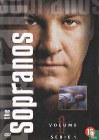Serie 1 - Volume 1