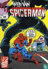 Web van Spiderman 24