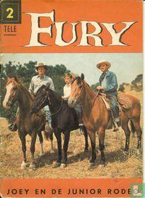 Joey en de junior rodeo