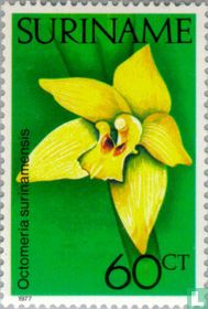 Orchideeën