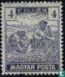 Maaiers