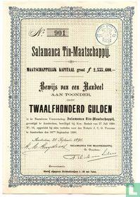 Salamanca Tin Maatschappij, Bewijs van een aandeel f 1.200,=, 1890