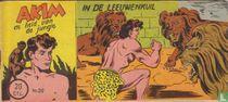 In de leeuwenkuil
