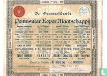 De geconsolideerde Peninsular Koper Maatschappij, Bewijs van 5 aandelen van 240 gulden, 1889