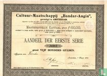 """Cultuur-Maatschappij """"Bandar-Angin"""", Aandeel, 500 Gulden, 1893"""