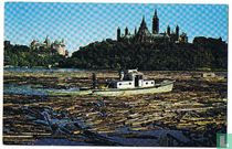 Otowa Ontario Canada - Sorting pulpwood logs for paper-making in the Ottawa River below the Parliament Buildings