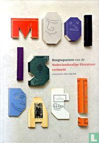 Mooi is dat! - Hoogtepunten van de Nederlandstalige literatuur verbeeld