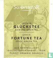 10 Grüner GLÜCKSTEE Gewürz-Grüntee | Green FORTUNE TEA Spice-GreenTea