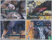 2006 Hot deep sources (AZO 75)